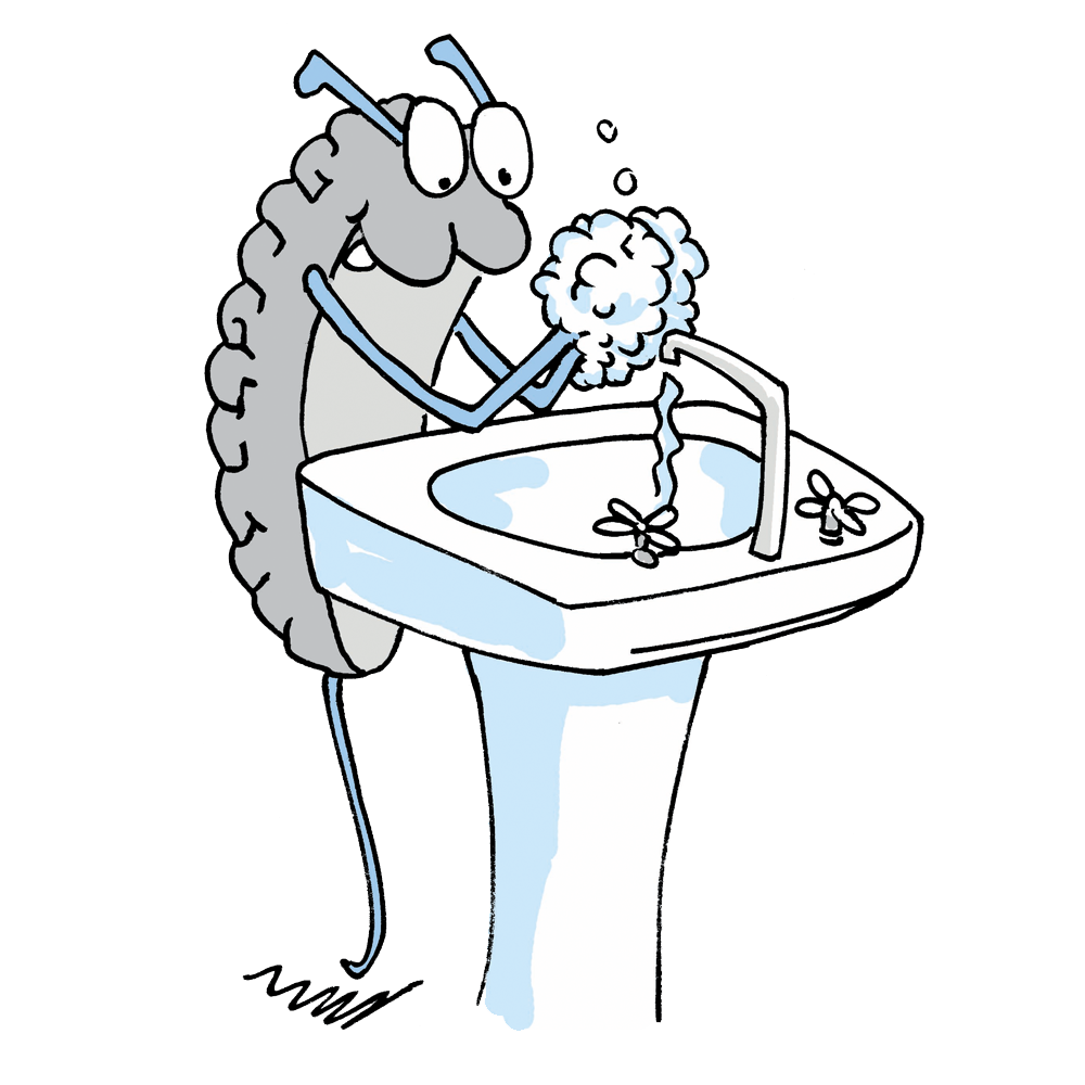 Germs & Handwashing