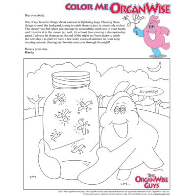 Outdoor Fun For Kids in Summer Coloring Page - OrganWise Guys